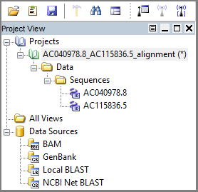 Project in Project View