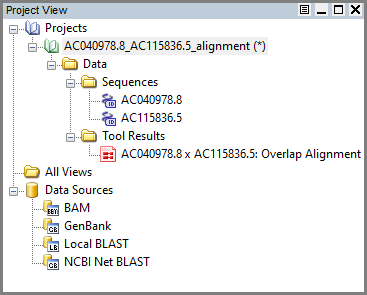 Find Overlap result in Project view